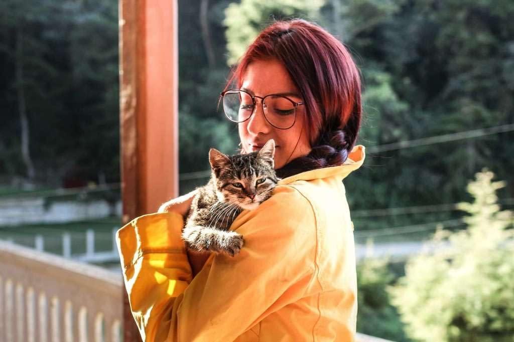 Cómo coger, agarrar, levantar de forma correcta a un gato
